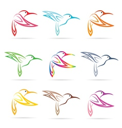 Group hummingbird vector