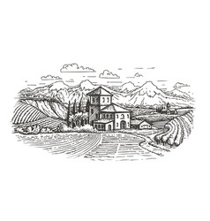 hand drawn rural landscape farm vineyard vector image