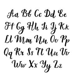 hand lettering calligraphic alphabet script vector image