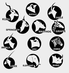 Set popular african animals for logos vector