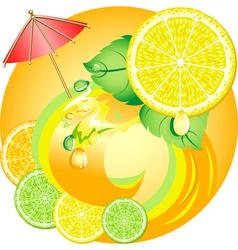 citrus ecology vector image