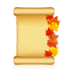 scroll with autumn leaves vector image vector image