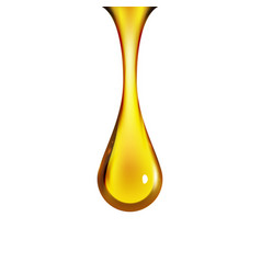 golden oil drop isolated on white vector image