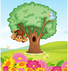 a monkey a bird and a tree vector image