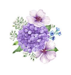 bouquet apple tree flower gypsophila in vector image
