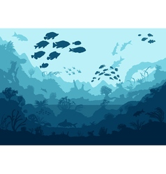 coral reef and sea creatures undersea vector image