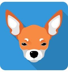 Dog Chihuahua icon flat design vector
