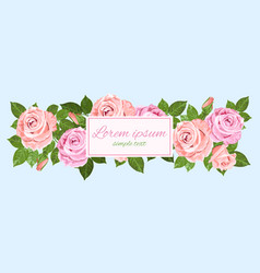 pink and beige roses blue greeting card vector image