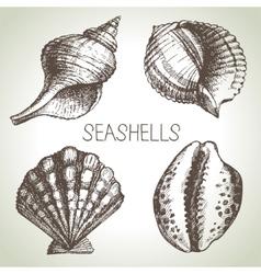 Seashells hand drawn set Sketch design elements vector