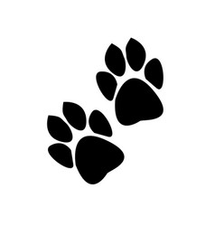 traces of animals on a white background vector image