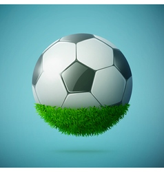 Grass sphere with soccer ball vector