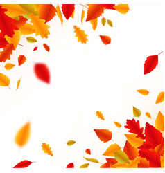 autumn falling leaves banner vector image