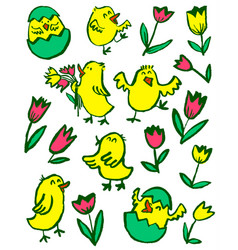 easter chick set floral collection with spring vector image