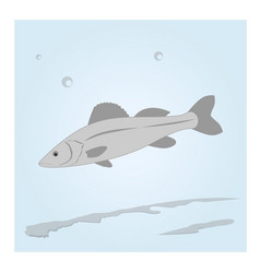 Fish in the water vector