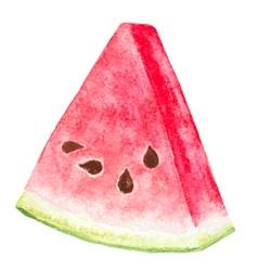 Watermelon piece vector