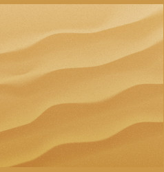 sand background texture vector image