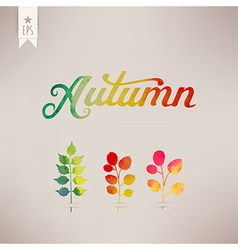 Autumn watercolor lettering Abstract hand drawn vector image