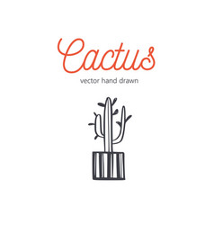 cactus hand drawn desert houseplant sketch vector image