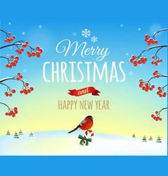 Christmas greeting card poster Bullfinch bird vector image vector image
