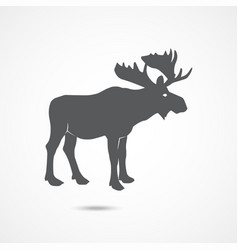 Elk flat icon vector