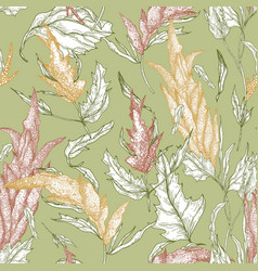 Floral seamless pattern with quinoa plants hand vector