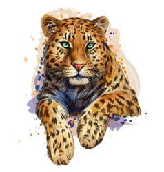 Leopard jaguar color graphic artistic portrait vector