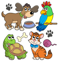 Pet collection vector