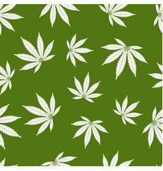 cannabis seamless pattern marijuana leaf white vector image