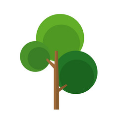 Cartoon tree branch trunk natural image vector