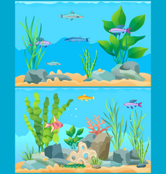 Colorful cartoon aquarium fishes set promo poster vector