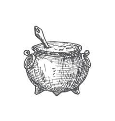 hand drawn halloween witch cauldron vector image
