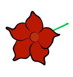 mandevilla flower vector image