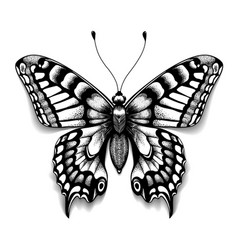 Realistic butterfly with shadow tattoo art vector