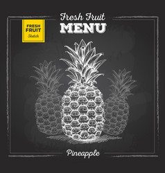 Realistic chalk drawing tropic fruit pineapple vector