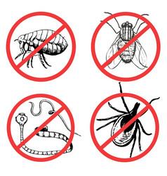 Set ink drawn pests worm fly flea mite vector