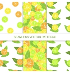 Set of seamless citrus pattern Lemon pattern vector image