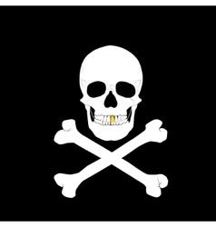 White skull and crossbones vector image