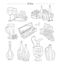 Wine and Grapes Hand drawn Set vector image