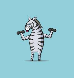 zebra is engaged in sports - raises dumbbells vector image