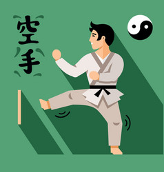 karate fighter flat style colorful cartoon vector image