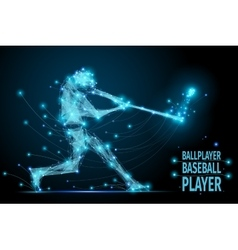 baseball ballplayer polygonal vector image