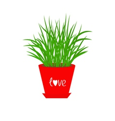 Grass Growing in red flower pot Icon Isolated Love vector image