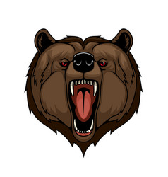 grizzly bear head mascot isolated wild predator vector image