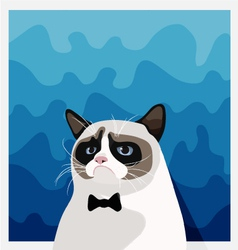 Grumpy Birman cat with black bow tie vector