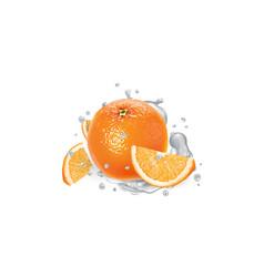 Orange with slices in splashes yogurt vector
