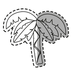 Isolated pam tree design vector image
