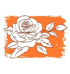Rose pattern on orange and white background vector image