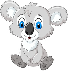 Cartoon adorable koala sitting isolated vector