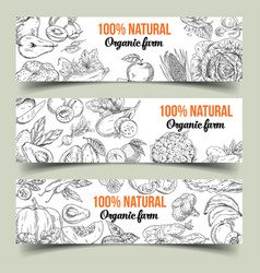 set of isolated banners with fruits and vegetables vector image