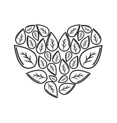 silhouette leaves with form of heart vector image